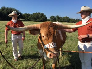 TXWP Podcast: Texans land in California, Jovan to Austin?, NCAA growth in Texas