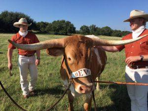 TXWP Podcast: Texans land in California, Jovan to Austin?, NCAA growth in Texas